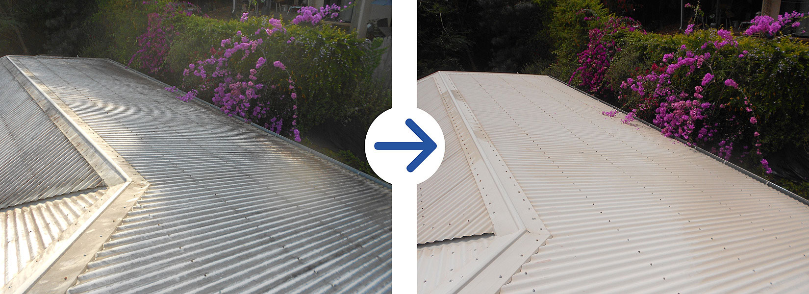 Pressure Cleaning Services 754 216 8858 Roof Commercial
